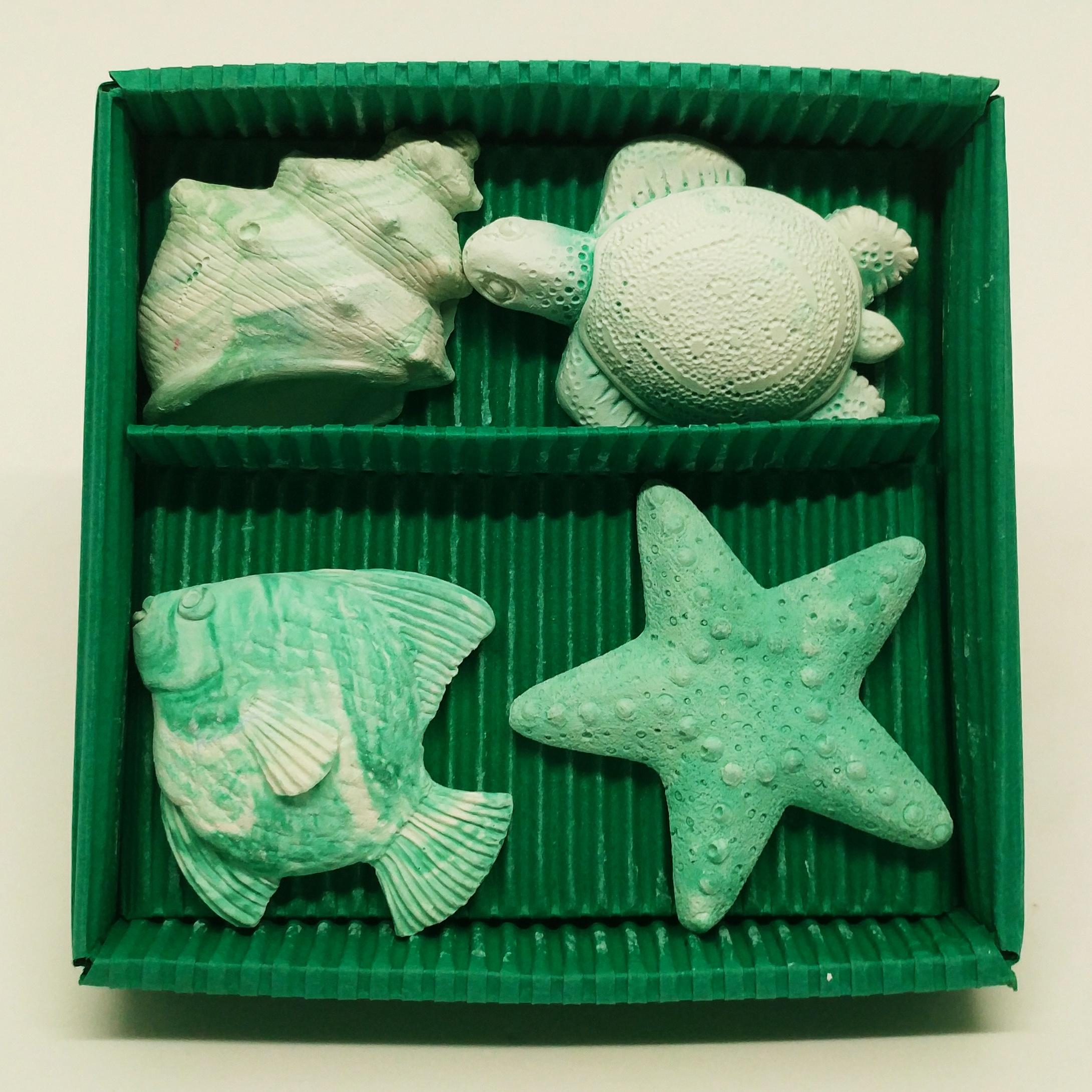 海洋生物禮盒