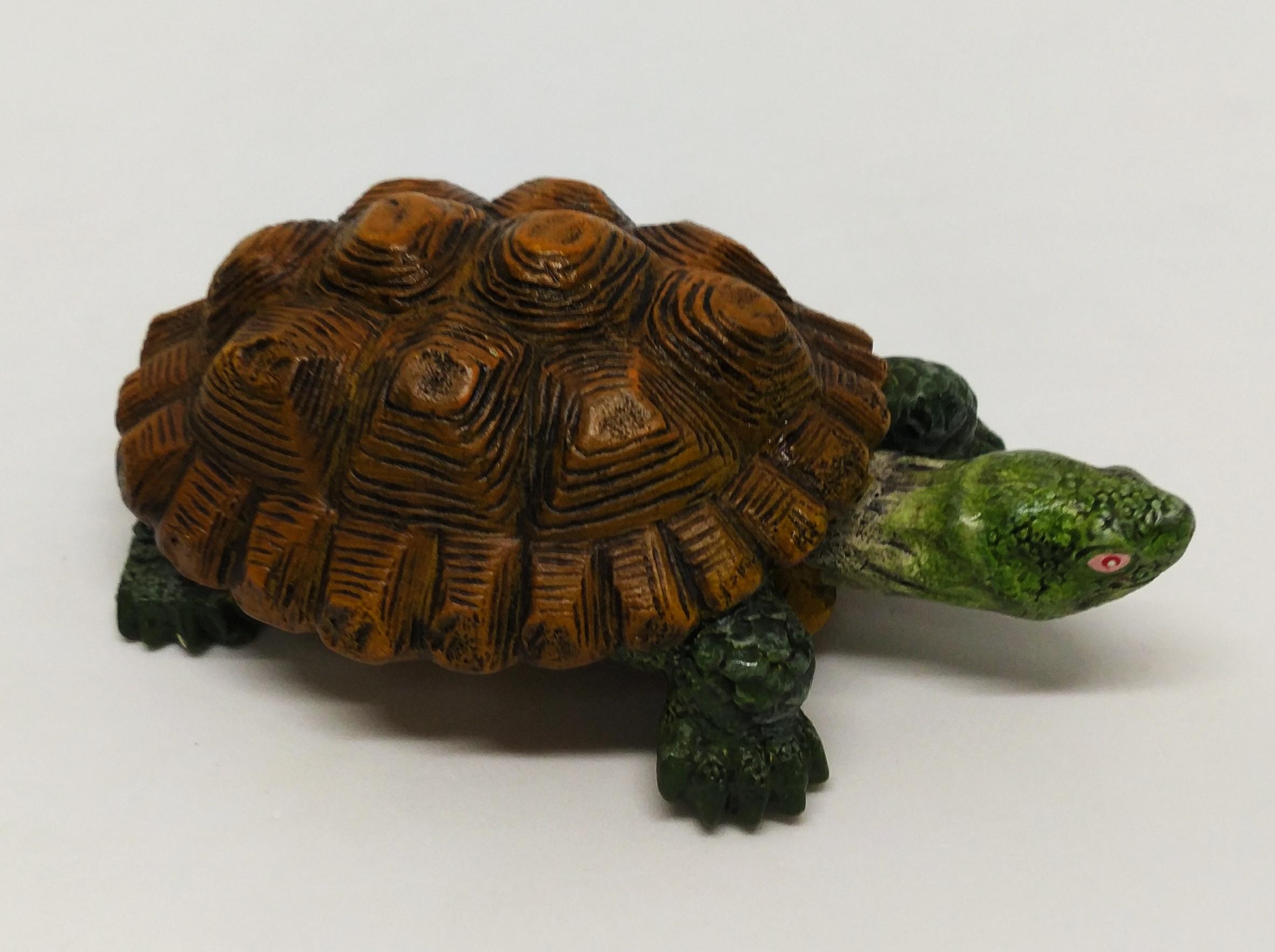 烏龜模型 (陸龜)