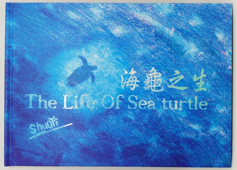 聽海龜的故事